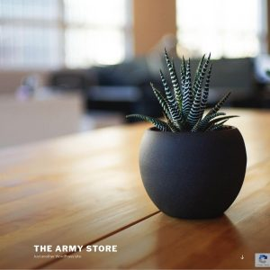 The Army Store website screenshot